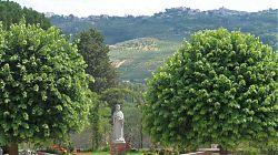 sabine hills view