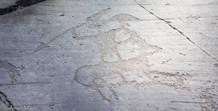 valcamonica petroglyph