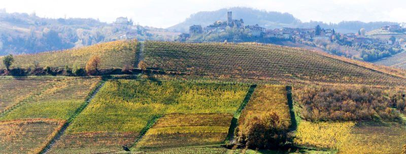 langhe wine region photo