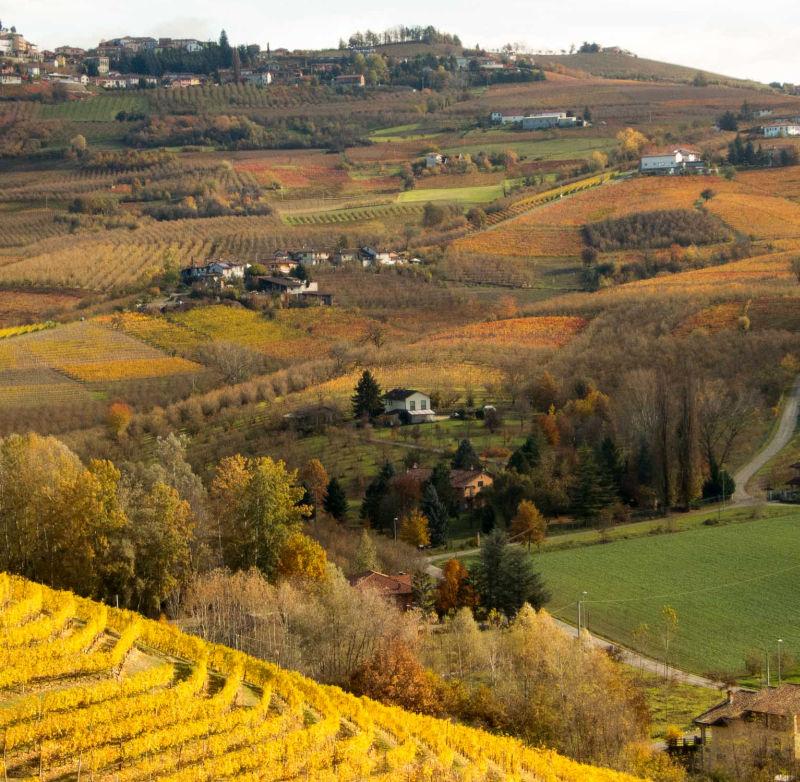 Langhe Wine Region of Piemonte